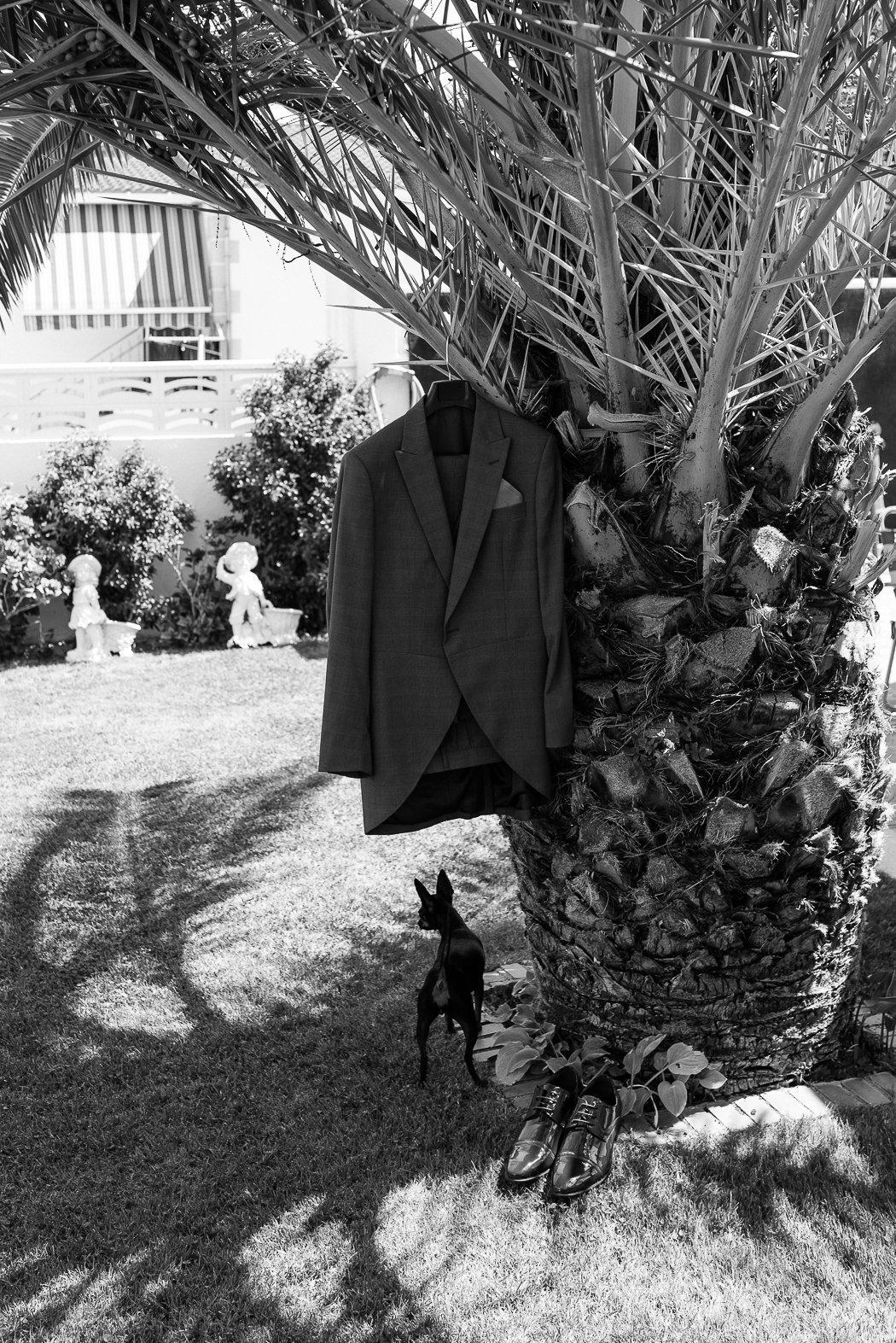 Art2eyes-Photography-Boda-Alamo-JesusYLorena-7